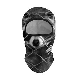 Балаклава Енот за решеткой цвета 3D-черный — фото 1