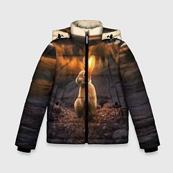 Куртка зимняя для мальчика Солнечный зайчик цвета 3D-черный — фото 1