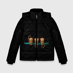 Куртка зимняя для мальчика Обезьяны слух зрение речь трио цвета 3D-черный — фото 1