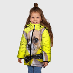 Куртка зимняя для девочки Чихуахуа с бабочкой цвета 3D-черный — фото 2
