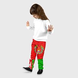 Брюки детские Патриот Беларуси цвета 3D-принт — фото 2