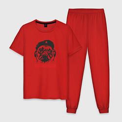 Пижама хлопковая мужская Obey the pug цвета красный — фото 1