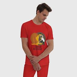Пижама хлопковая мужская Ветеринар цвета красный — фото 2