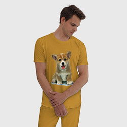 Пижама хлопковая мужская Песик коржик цвета горчичный — фото 2