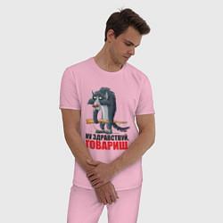 Пижама хлопковая мужская Здравствуй товарищ цвета светло-розовый — фото 2
