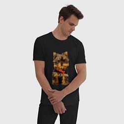 Пижама хлопковая мужская Маленький Йорк цвета черный — фото 2