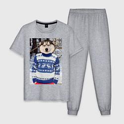 Пижама хлопковая мужская Хаски в свитере цвета меланж — фото 1