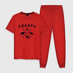 Пижама хлопковая мужская Сибирь цвета красный — фото 1