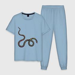 Пижама хлопковая мужская Змея цвета мягкое небо — фото 1