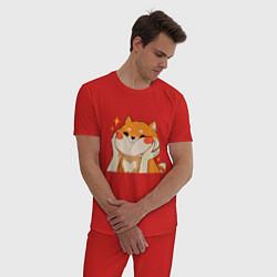 Пижама хлопковая мужская Сиба Ину Милые Щечки цвета красный — фото 2