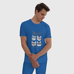 Пижама хлопковая мужская KISS CATS цвета синий — фото 2