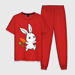 Пижама хлопковая мужская Зайка с морковкой цвета красный — фото 1