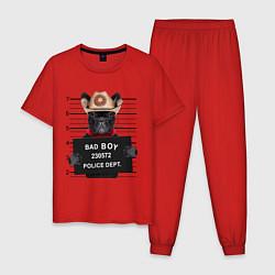 Пижама хлопковая мужская Bad Boy: Dog цвета красный — фото 1