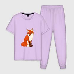 Пижама хлопковая мужская Рыжая лисица цвета лаванда — фото 1