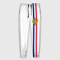 Брюки на резинке мужские Франция: лента с гербом цвета 3D-принт — фото 1