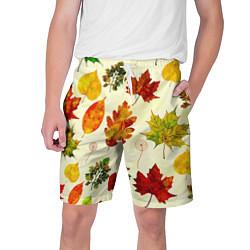 Шорты на шнурке мужские Осень цвета 3D — фото 1