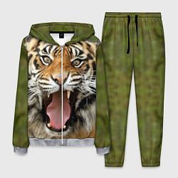 Костюм мужской Удивленный тигр цвета 3D-меланж — фото 1