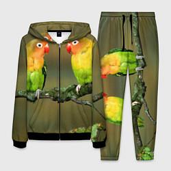 Костюм мужской Два попугая цвета 3D-черный — фото 1