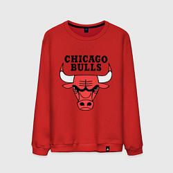 Свитшот хлопковый мужской Chicago Bulls цвета красный — фото 1