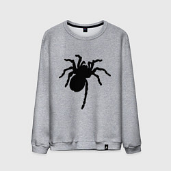 Свитшот хлопковый мужской Черный паук цвета меланж — фото 1