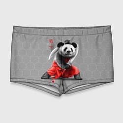 Мужские плавки Master Panda цвета 3D — фото 1