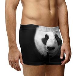 Трусы-боксеры мужские Взгляд панды цвета 3D-принт — фото 2