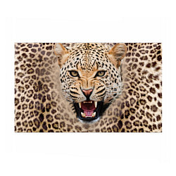 Бумага для упаковки Взгляд леопарда цвета 3D — фото 1