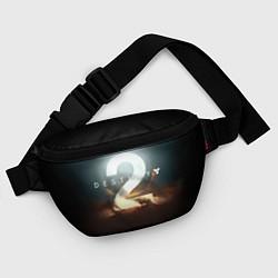 Поясная сумка Destiny 2 цвета 3D — фото 2